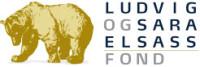 LSEF-Logo (1)